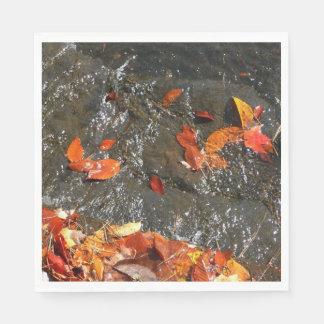 Guardanapo De Papel Folhas da queda na cachoeira mim fotografia do