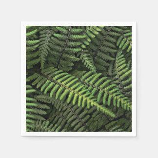 Guardanapo De Papel Folhas verdes da samambaia