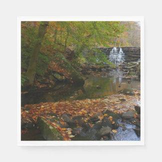 Guardanapo De Papel Foto da cachoeira da queda e da natureza de