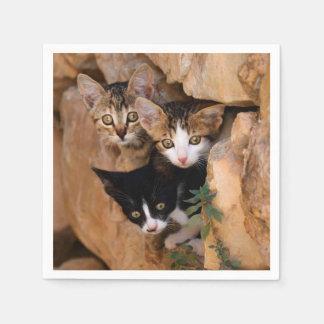 Guardanapo De Papel Foto engraçada de três caras curiosas bonitos dos