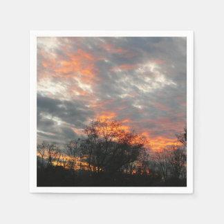 Guardanapo De Papel Fotografia da paisagem da natureza do por do sol