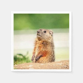 Guardanapo De Papel Groundhog novo