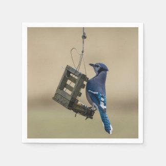 Guardanapo De Papel Jay azul de balanço