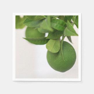 Guardanapo De Papel Limões verdes no ramo