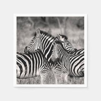 Guardanapo De Papel Listras preto e branco do safari da natureza do