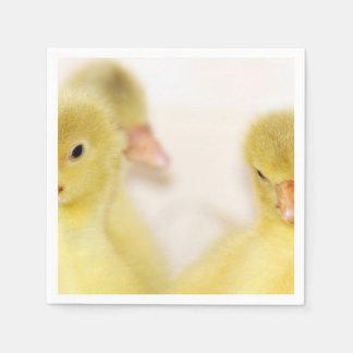 Guardanapo De Papel Patinhos amarelos macios