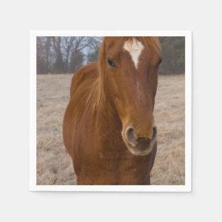 Guardanapo De Papel Pose do cavalo