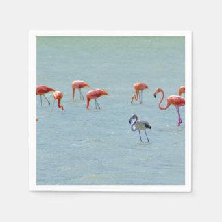Guardanapo De Papel Rebanho cinzento e cor-de-rosa dos flamingos no