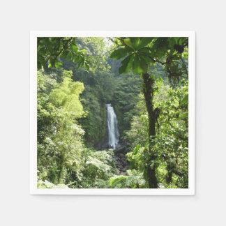 Guardanapo De Papel Trafalgar cai fotografia tropical da floresta