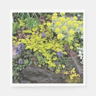 Guardanapo De Papel Vegetações rasteira do jardim da casa de campo do