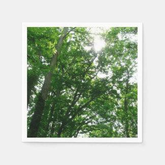 Guardanapo De Papel Vista acima às árvores do verão