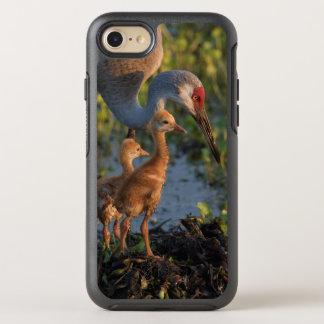 Guindaste com pintinhos, Florida de Sandhill Capa Para iPhone 8/7 OtterBox Symmetry