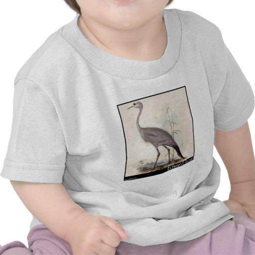 Guindaste do Stanley de Edward Lear T-shirt