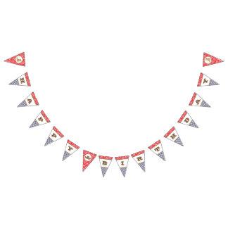 Guingão de Paisley da bandeira do feliz
