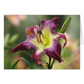 H. Cartão de nota violeta de Sabrewing