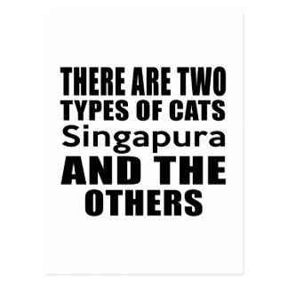 HÁ DOIS TIPOS dos GATOS Singapura E o OTHE Cartão Postal