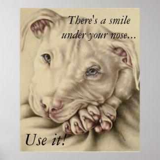 Há um sorriso sob seu nariz - poster do pitbull