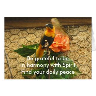 Haicais gratos/pássaros no cartão