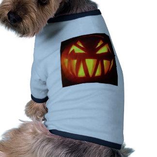 Halloween-2004-Jack-o-Lantern Roupa Para Cães