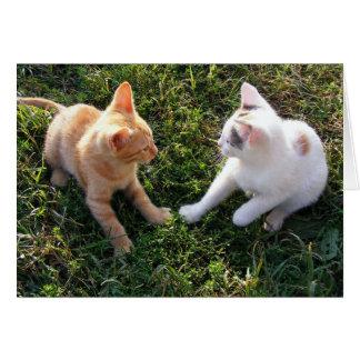 HAMbWG - cartão - 2 gatos