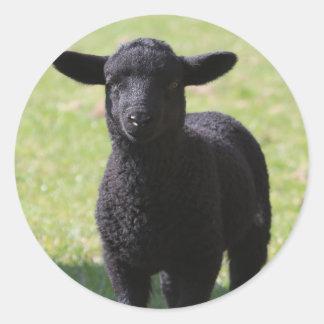 HAMbyWG - etiquetas - ovelhas negras
