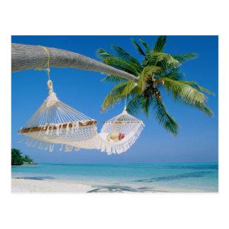 Hammock das férias do paraíso da praia cartão postal