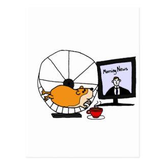 Hamster engraçado XY em uma sátira da roda do Cartão Postal
