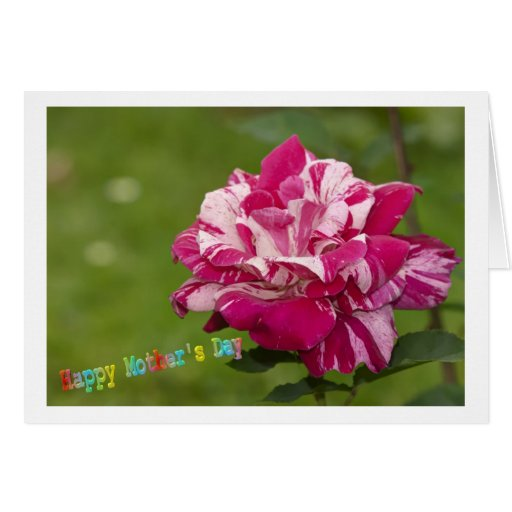 Happy Mothers Day Card Cartao