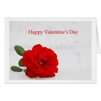 Happy Valentine's Day Cartoes
