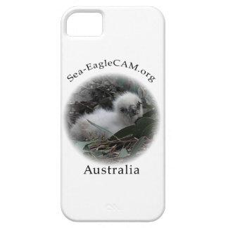 Hatchling de SeaEagle mim capa de telefone