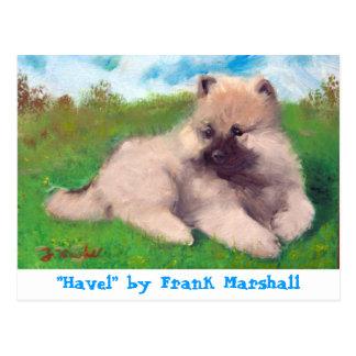 Havel pelo cartão de Frank Marshall