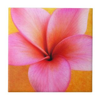 Hawaiian cor-de-rosa da flor de Havaí do Azulejo Quadrado Pequeno
