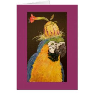 Hector o cartão do macaw