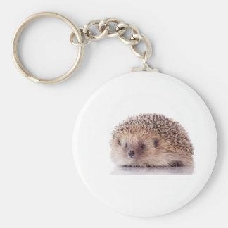 Hedgehog, Chaveiros