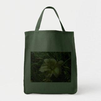 Hemerocallis amarelo bolsa para compra