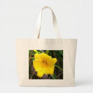 Hemerocallis amarelo bolsa