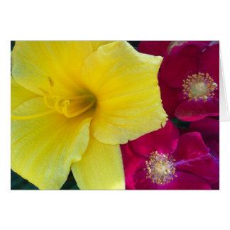 Hemerocallis amarelo e cartão carmesim dos rosas