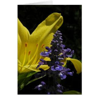 Hemerocallis vívido & cartão de nota floral de