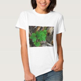 Hera na palmeira 2 angélico tshirt