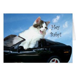 Hey cartão bonito do gatinho do bebê