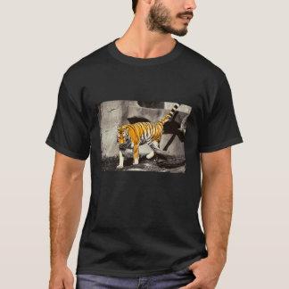 Hey lá, tigre! camiseta