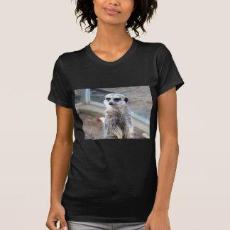 Hey quem você pensam sua vista? camiseta