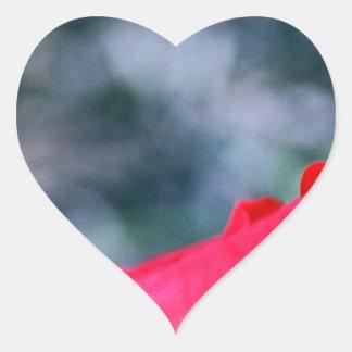 Hibiscus 4 adesivo coração