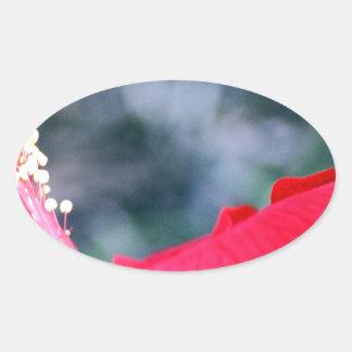 Hibiscus 4 adesivo oval