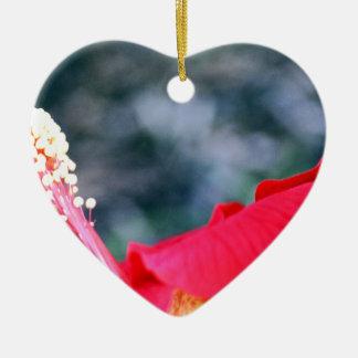 Hibiscus 4 ornamento de cerâmica coração