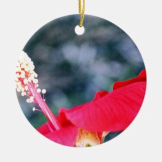 Hibiscus 4 ornamento de cerâmica redondo