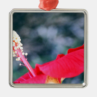 Hibiscus 4 ornamento quadrado cor prata