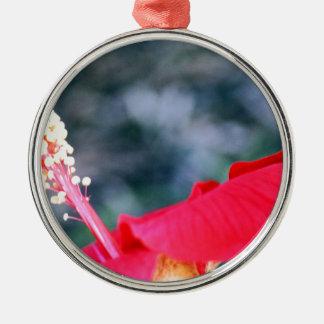 Hibiscus 4 ornamento redondo cor prata