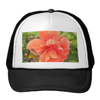 Hibiscus alaranjado brilhante boné