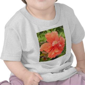 Hibiscus alaranjado brilhante t-shirts